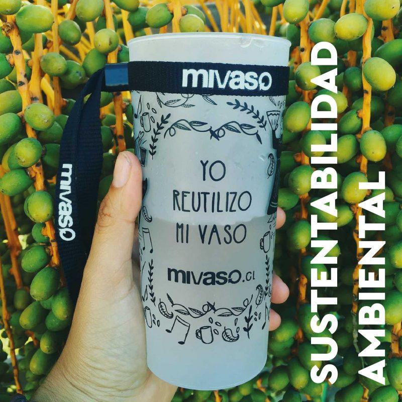 mivaso-sustentabilidad-ambiental